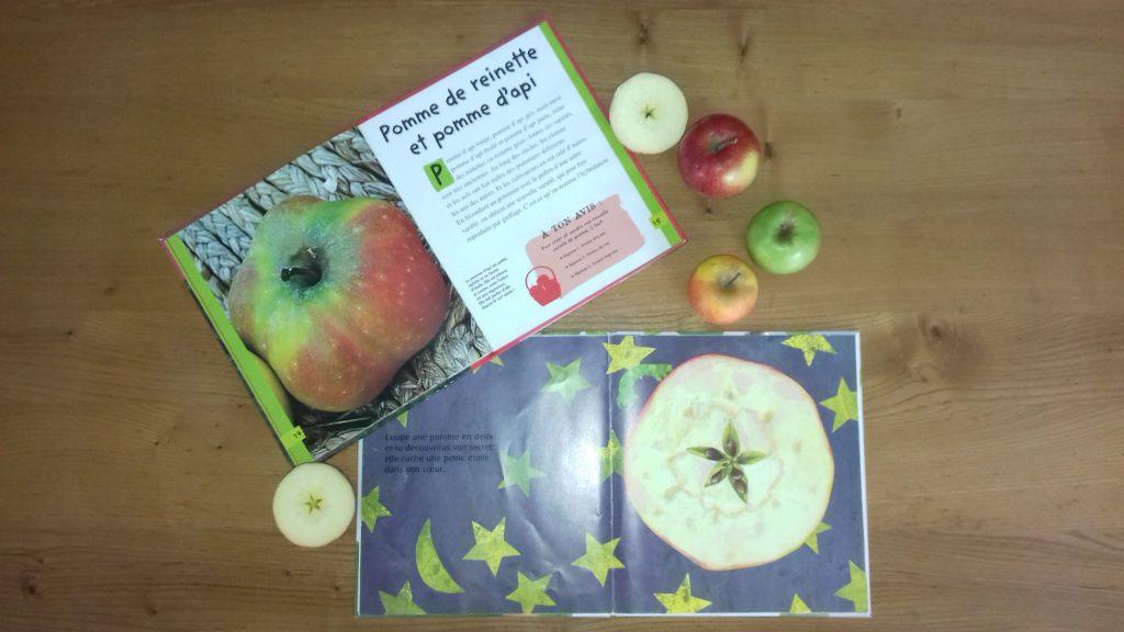 Atelier autour de la pomme